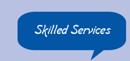 Skilled Services